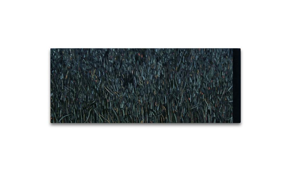 Maleza 7 , 2012, Oil on wood, 13 x 32.5 cm