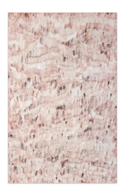 Marrone rossiccio transparente, 2012, Oil on canvas, 50 x 33 cm