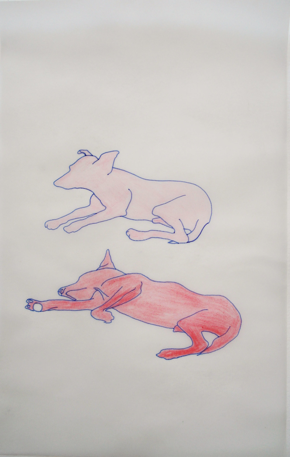 The Idler ,   2009, Ink and colored pencil on paper, 21,5 x 34  cm