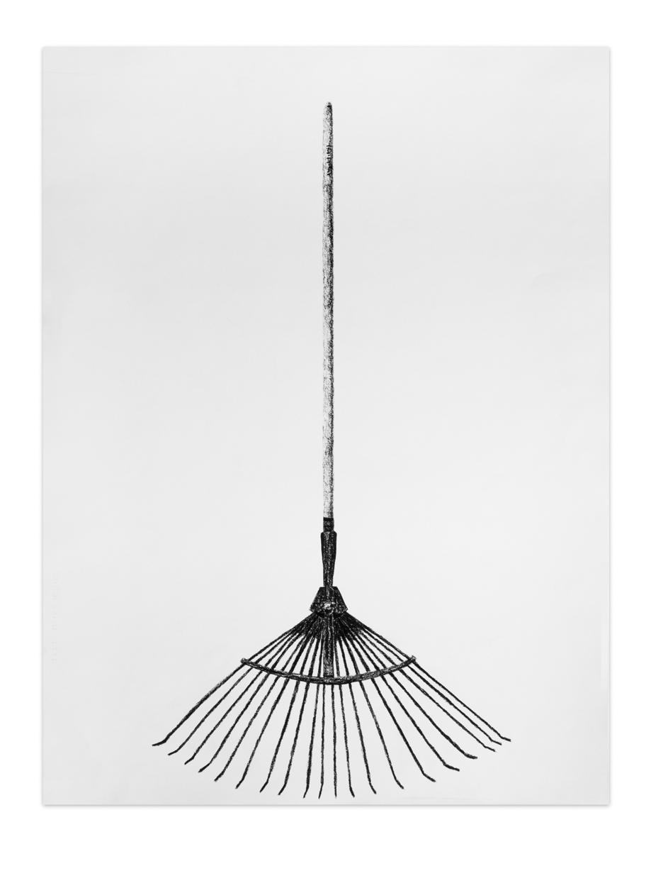 Barredora de hojas , 2012, Charcoal on paper, 61 x 45,8 cm
