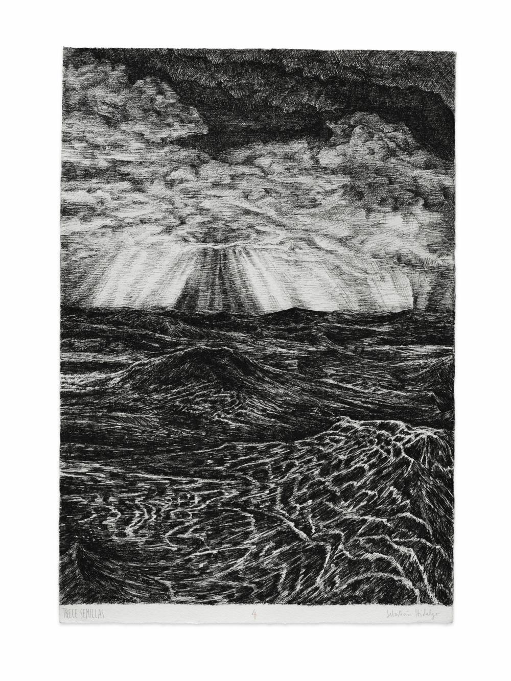 Trece semillas/4, 2015 Ink on paper, 39 x 26.5 cm