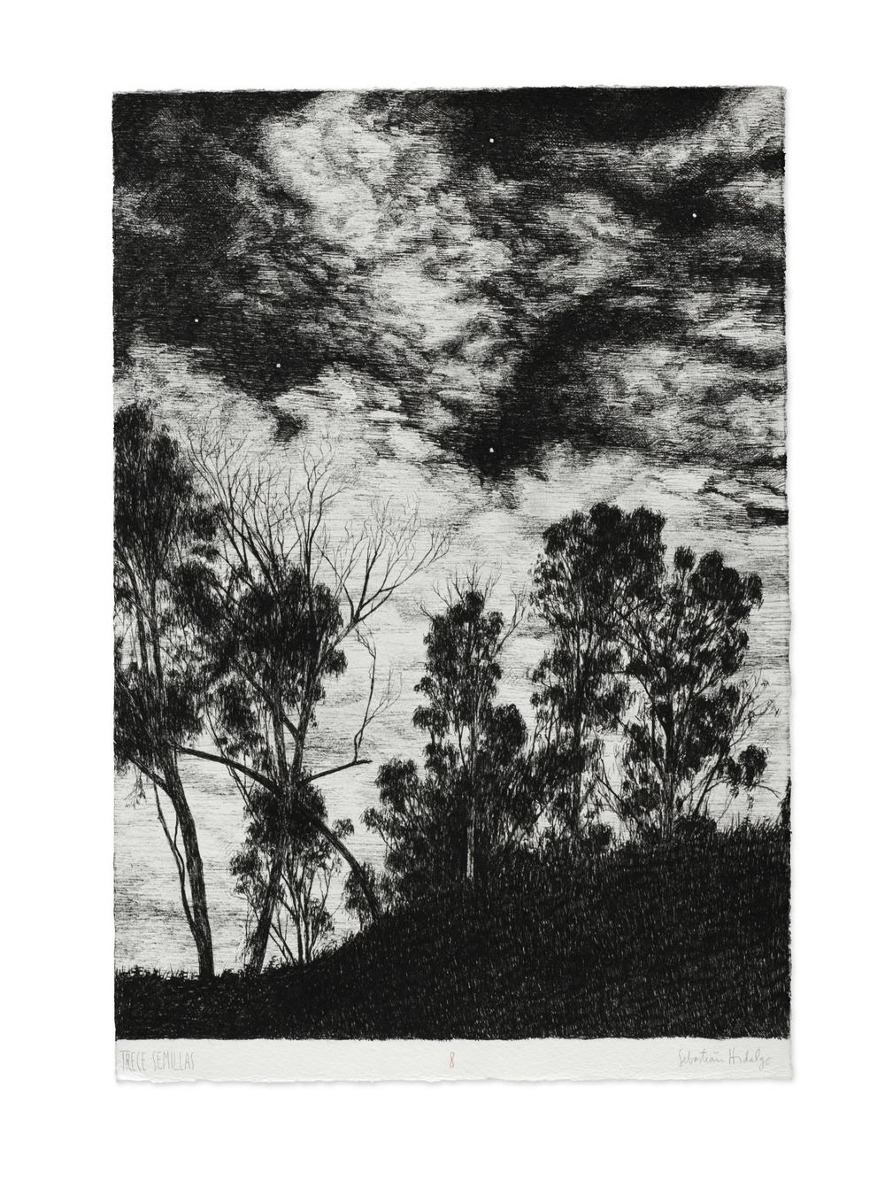 Trece semillas/8, 2015 Ink on paper, 39 x 26.5 cm