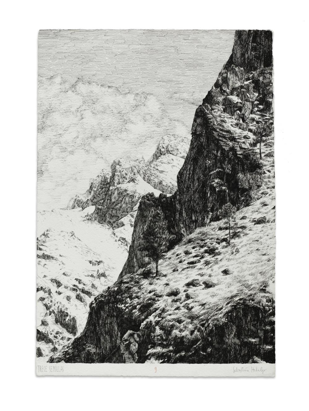 Trece semillas/9, 2015 Ink on paper, 39 x 26.5 cm