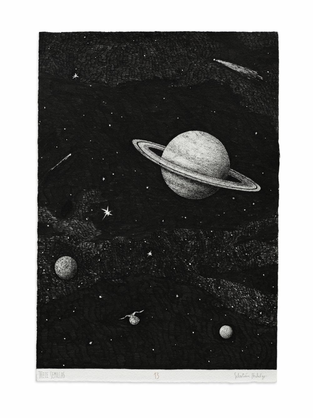 Trece semillas/13, 2015 Ink on paper, 39 x 26.5 cm