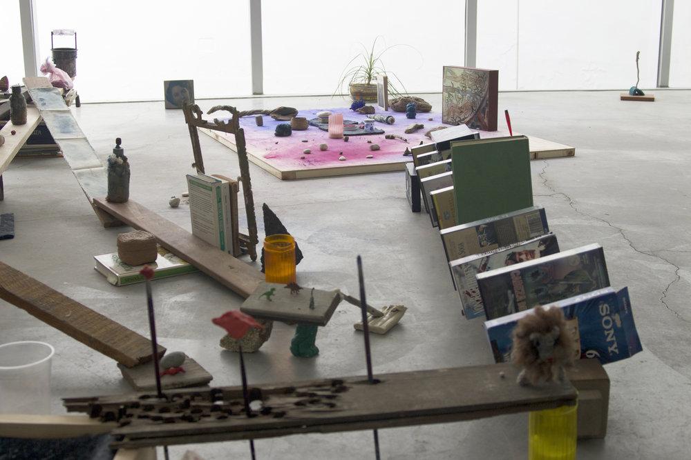 Bestia bruta ,  2016, interactive installation