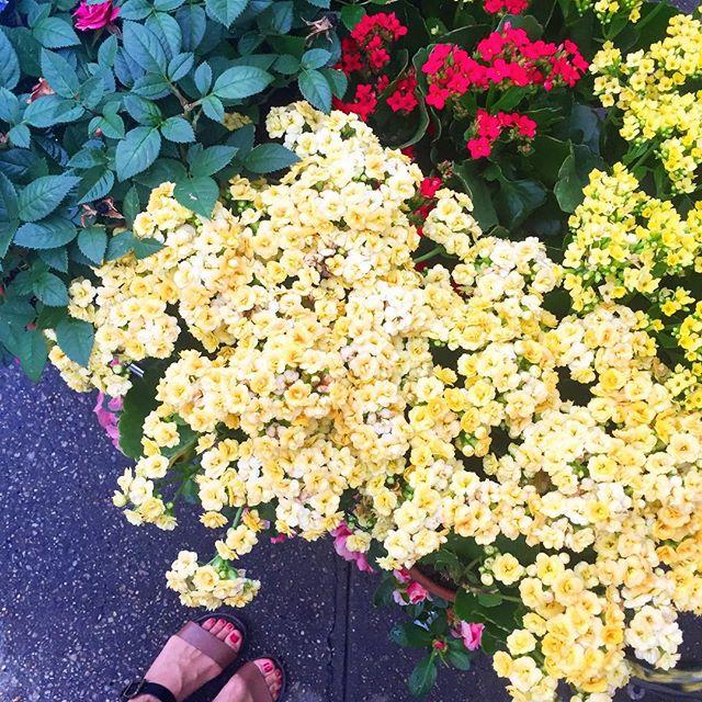 Happy Feet in a Happy Place ❤️ #heartshapehotel #flowercrowns #flowerlover #happyfinds #flowers #westvillage #newyork