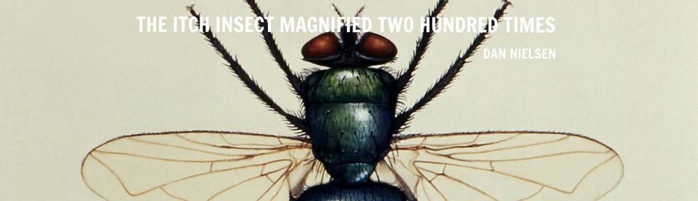 illustration-of-a-green-bottle-fly-lucilia-illustris-member-of-family-calliphoridae.jpg