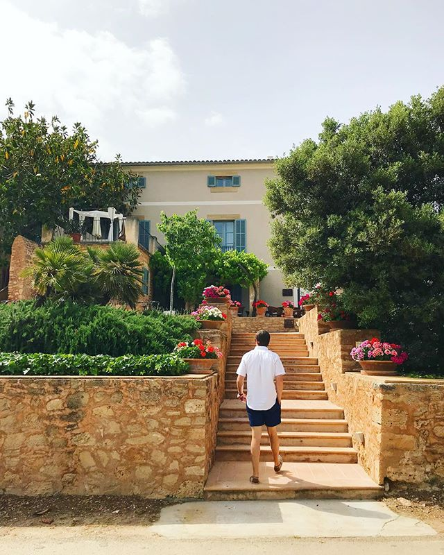 in Mallorca we stayed at a 17th-century countryside villa and each morning we took these steps to a delicious Spanish breakfast spread 🥖🧀🥚🍓
