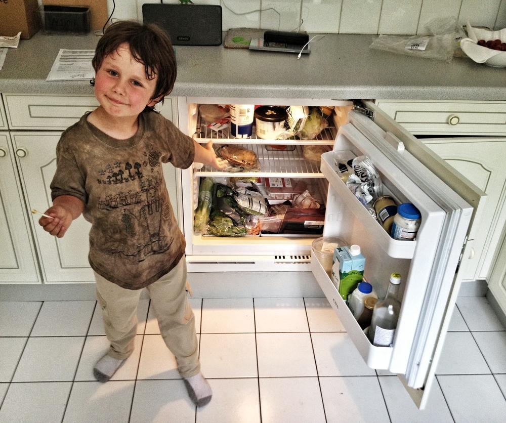 Z's Refrigerator