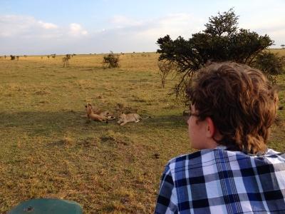 Watching lions, Masai Mara, Kenya