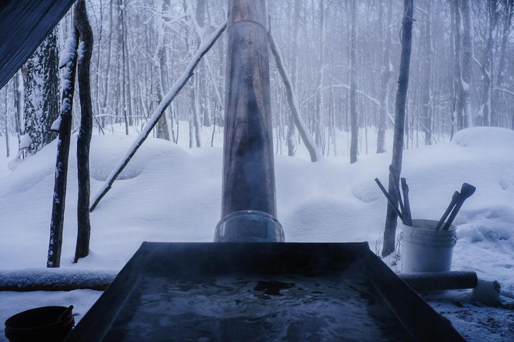 Sap Boiler.  Minnesota .