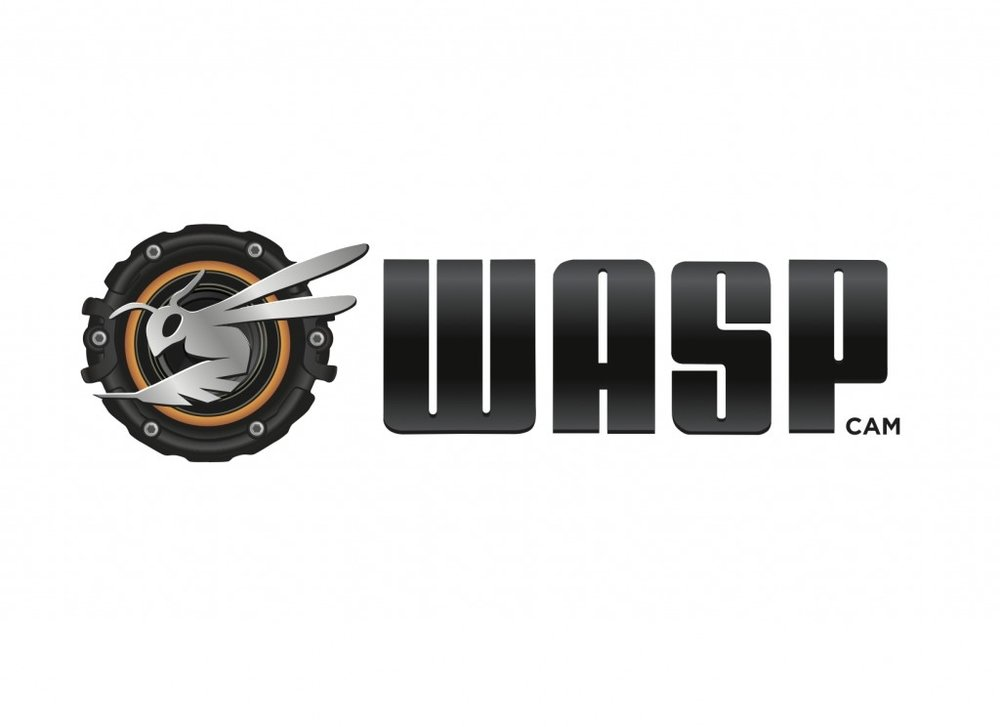 Wasp Cam.jpg