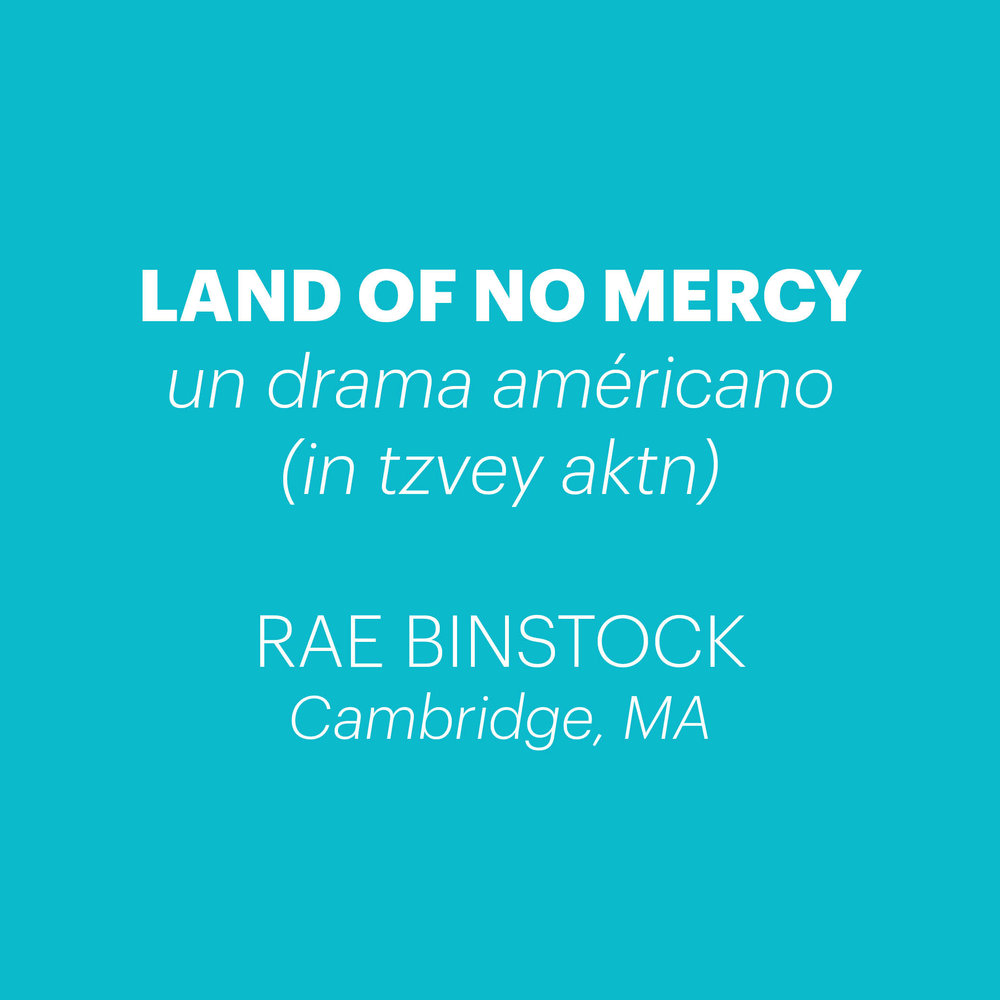 Binstock - Land of No Mercy.jpg