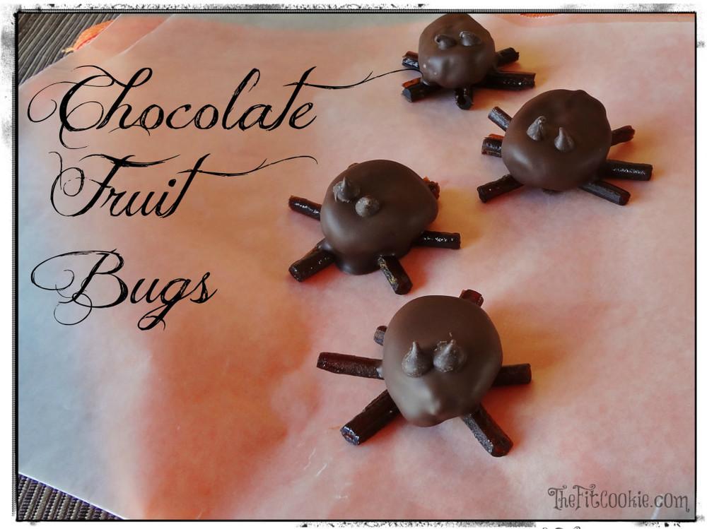 Chocolate-Fruit-Bugs-18-WM-1024x767.jpg