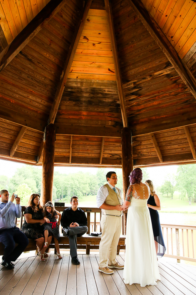 Meadowlark-Gardens-Gazebo-Wedding