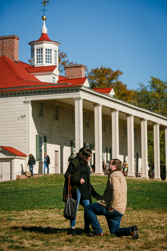 Mount-Vernon-Surprise-Proposal