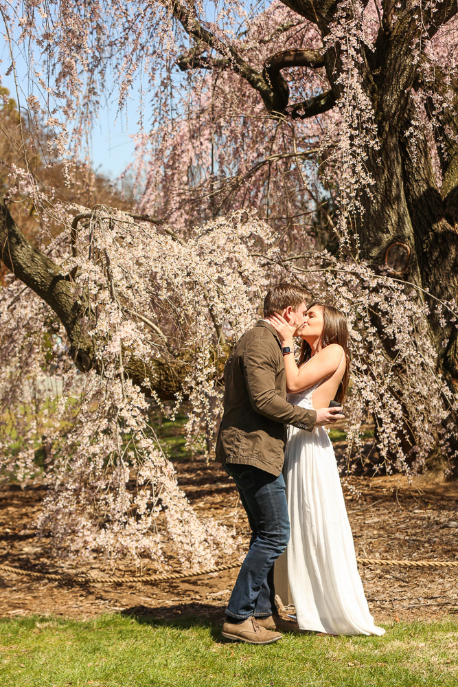 National-Arboretum-Surprise-Proposal-Photography