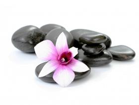 stones_flowers.jpg