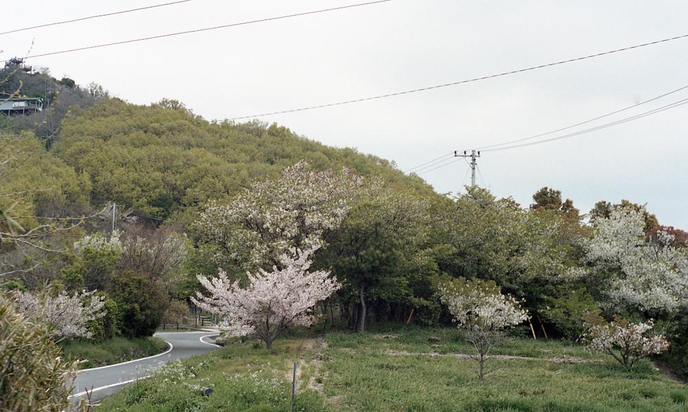 nomadic385.jpg