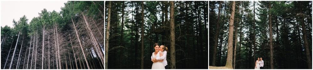 queenstown same sex wedding pine trees