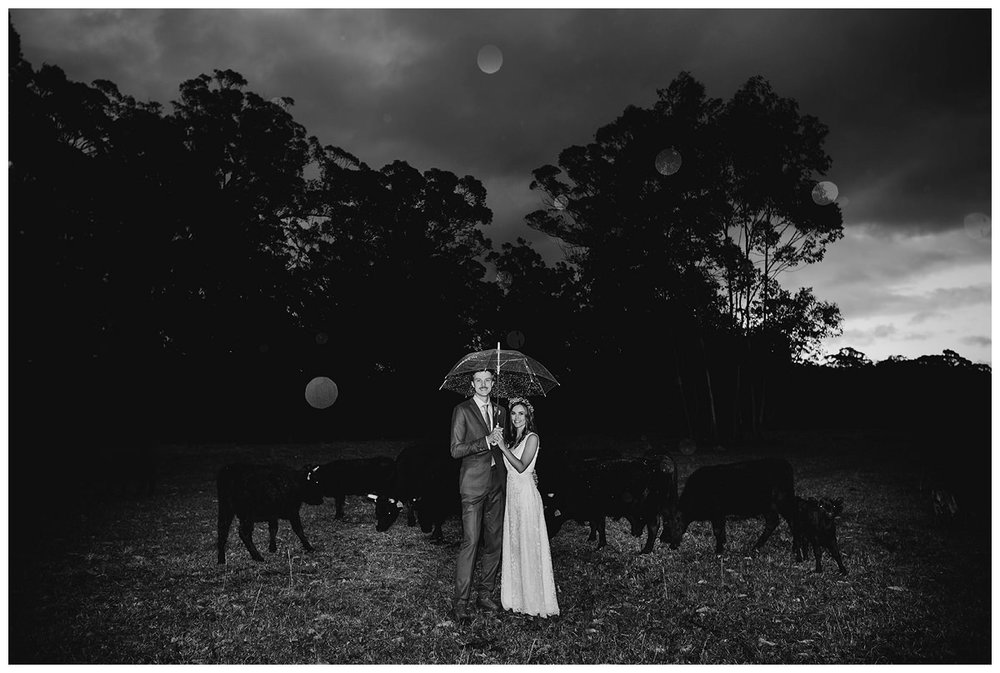 Sydney Boolambayte  Farm Wedding Photographer_0222.jpg