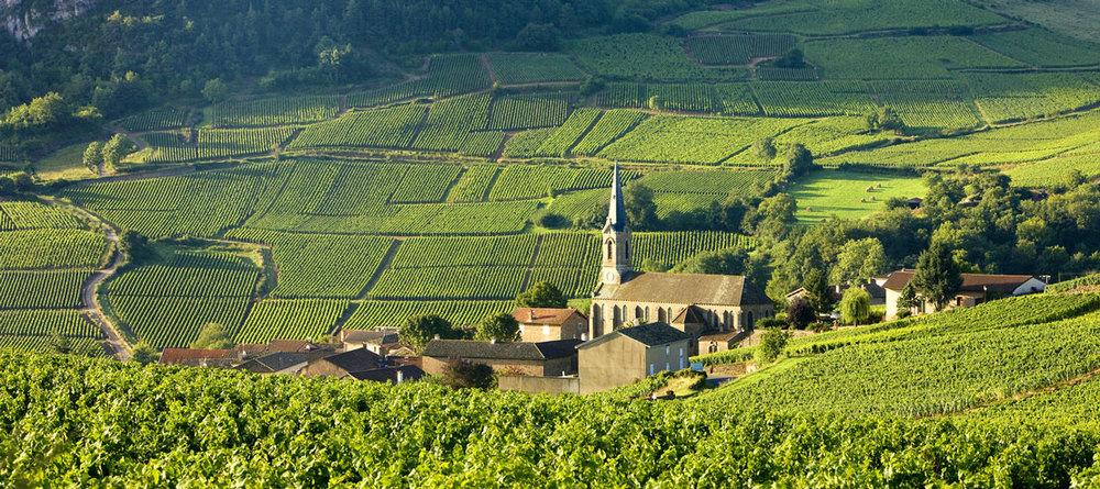 La Vallée de la Loire -  image: winery88.com