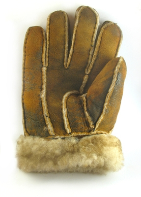 winter-glove-1354250.jpg