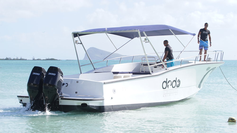Dodo Divers speed boat