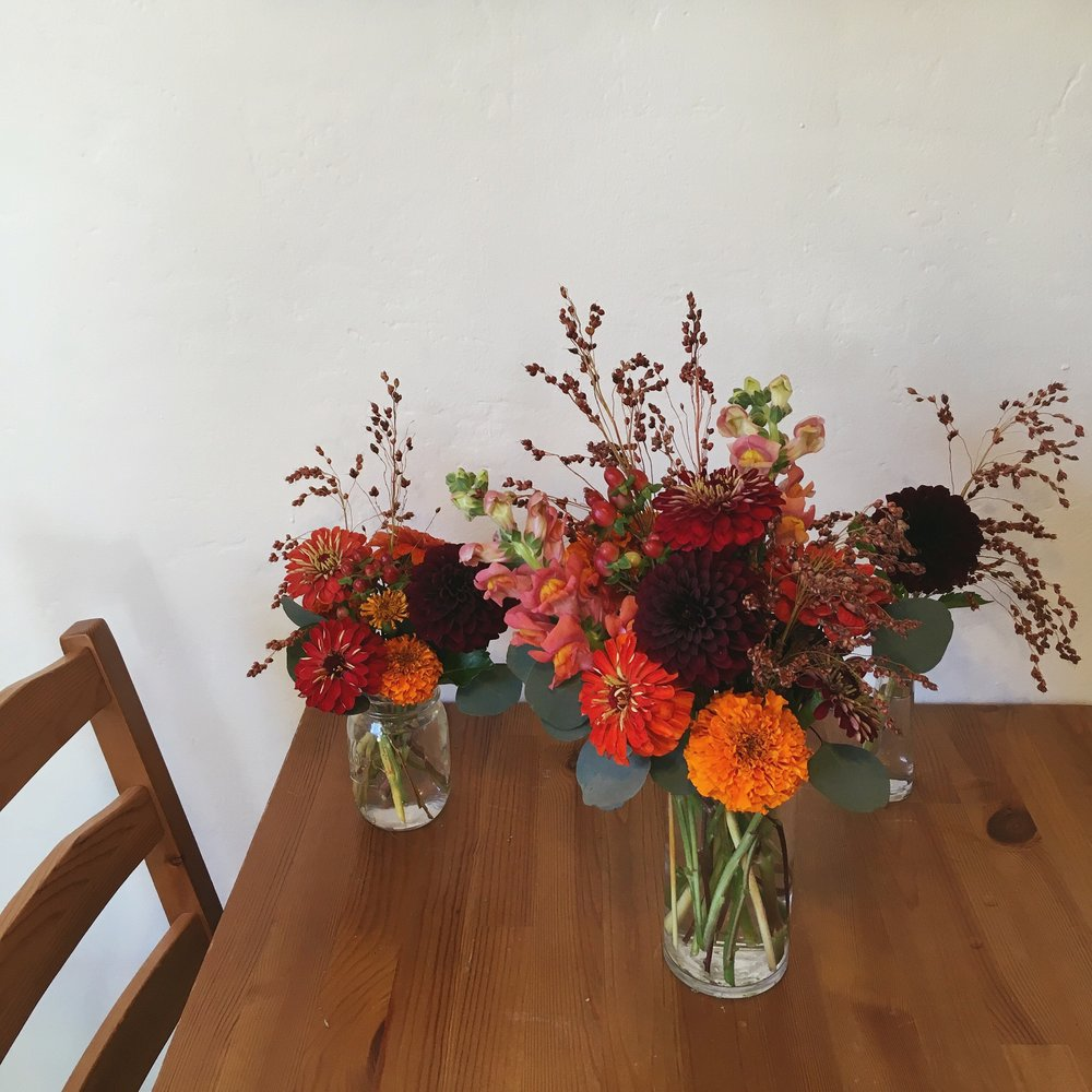 In my studio: fall colors, local blooms from Caitlin (Vida Verde)
