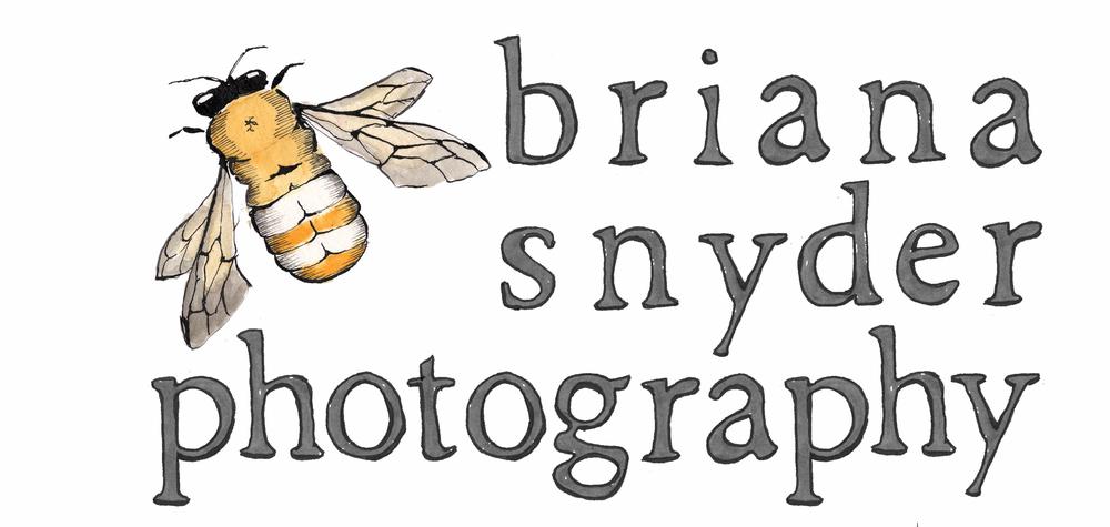 bsp_logo4_gray.jpg
