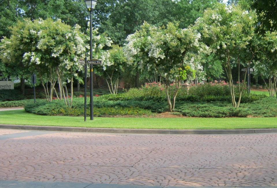 Roundabout - Landscape