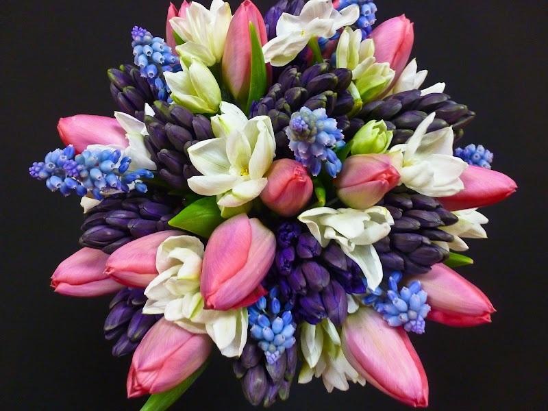-Spring: Agapanthus, Calla Lily, Gardenia, Hollyhock, Hyacinth, Lilac, Ranunculus, Tulip, Sweet Peas