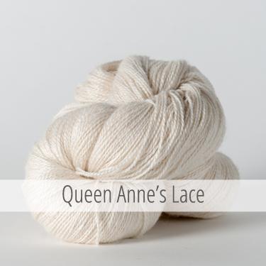 queenanneslace_375