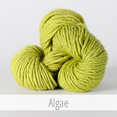 The Fibre Company's Organik in Algae