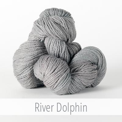 river dolphin.jpg