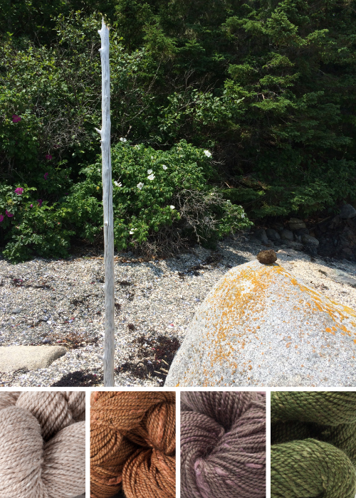 Acadia Color Inspiration / sand, amber, bur oak, juniper