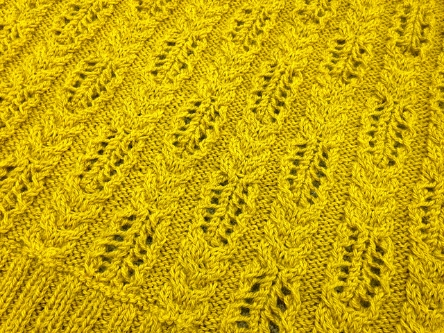 Abram's Bridge by Mer Stevens knit by Sarah Moran