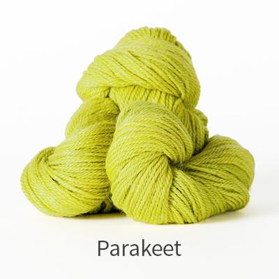 canopy-fingering-parakeet_blog
