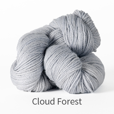 canopy-fingering-cloud-forest_blog