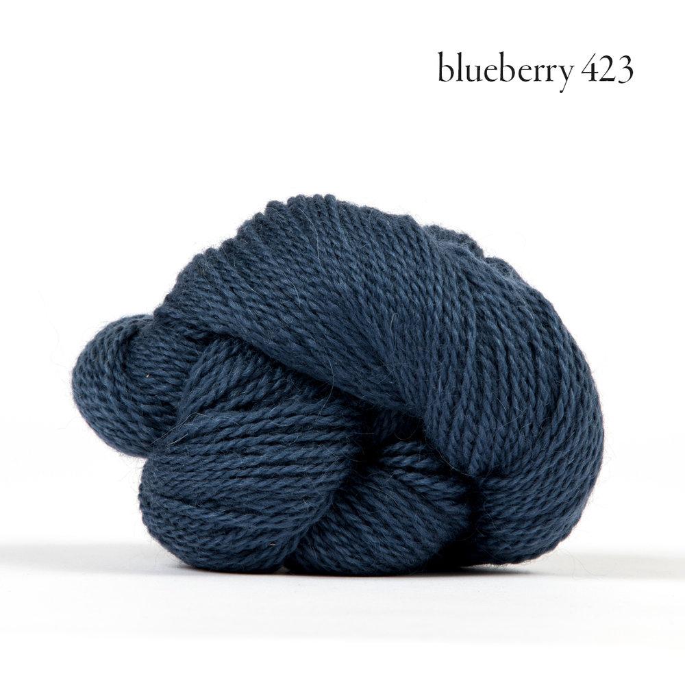 Andorra blueberry.jpg