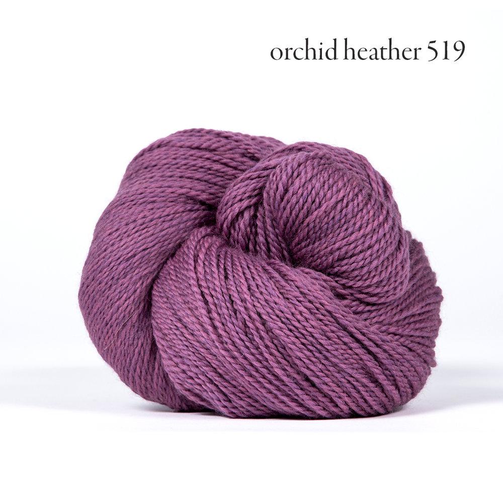orchid heather 519.jpg