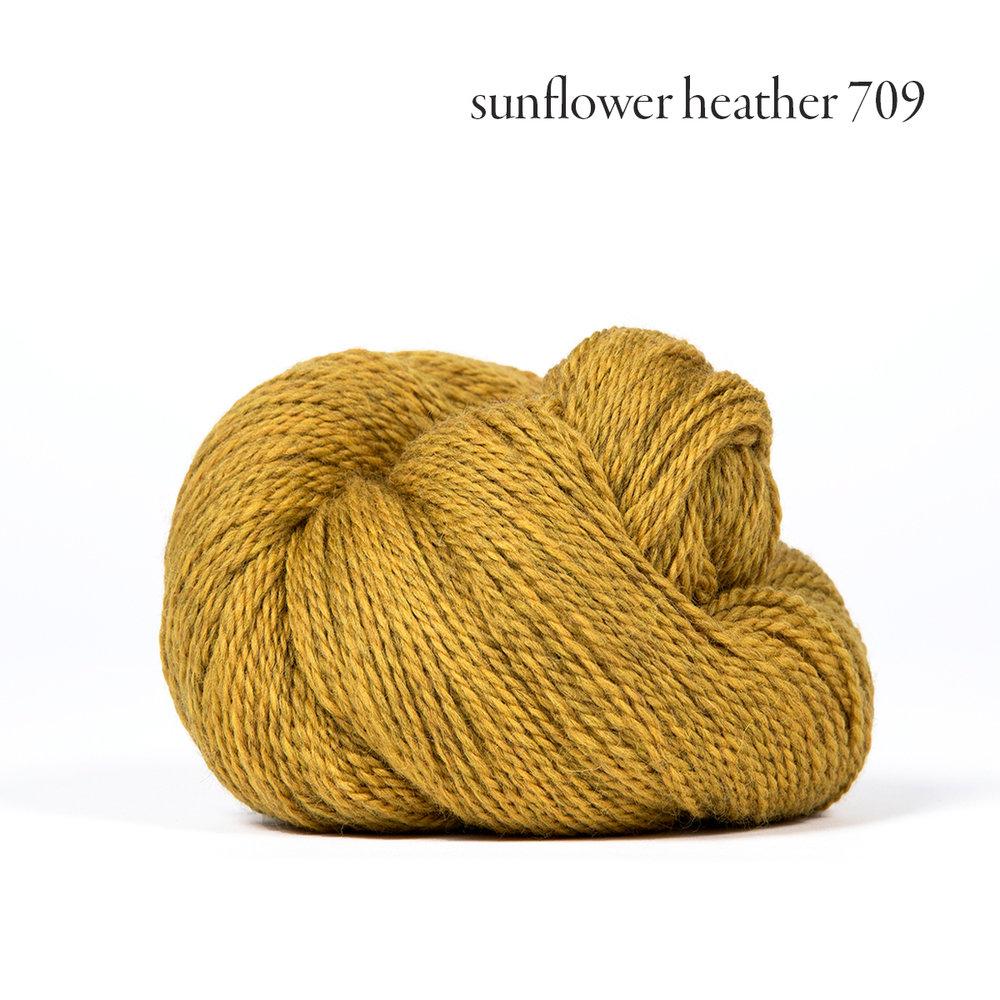 sunflower heather 709.jpg