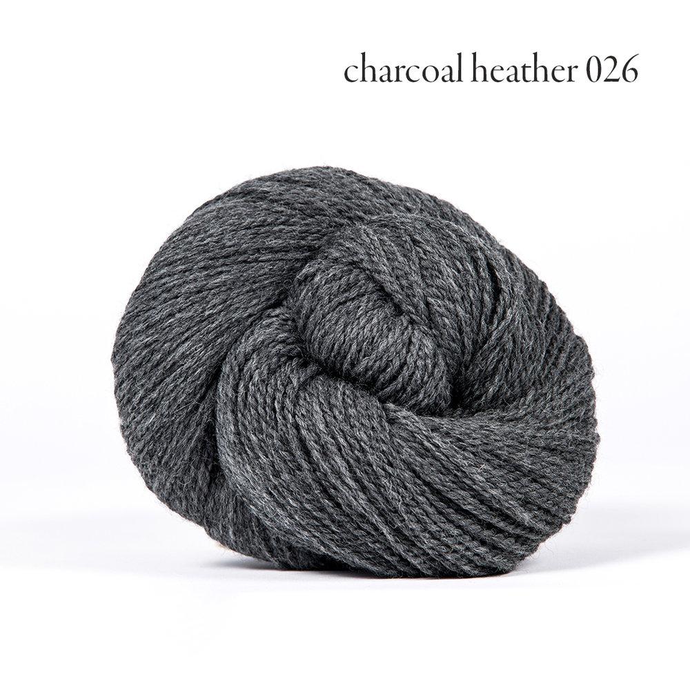 charcoal heather 026.jpg