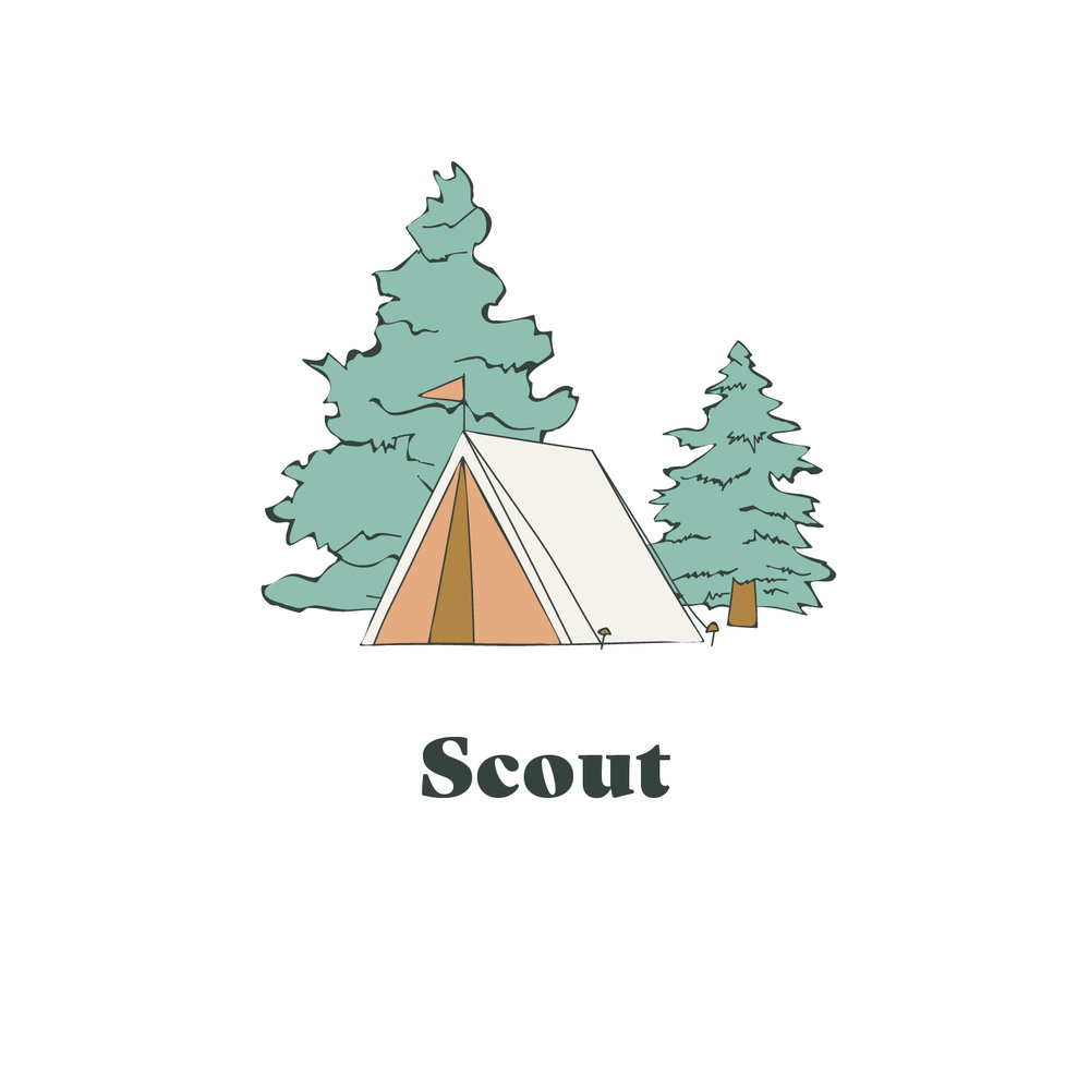Scout Yarn Graphic.jpg
