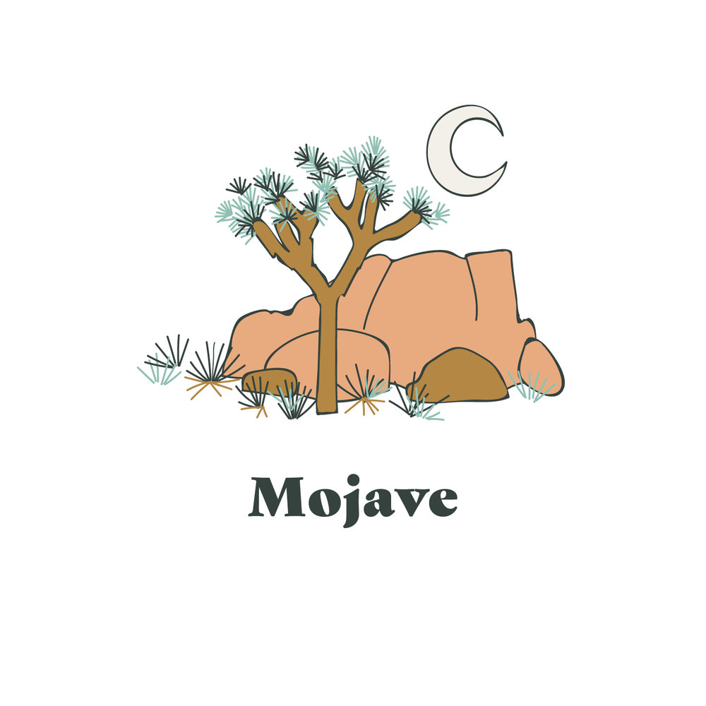 Mojave Yarn Graphic.jpg