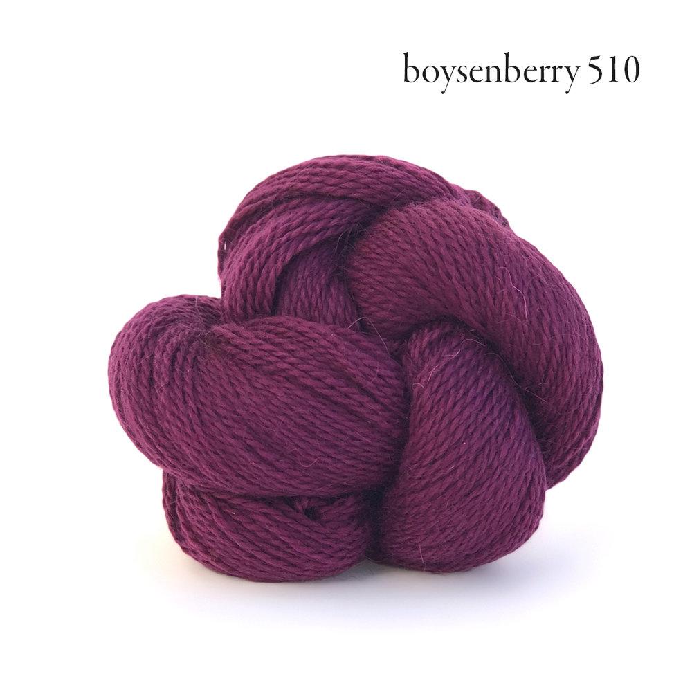 Andorra boysenberry 510.jpg