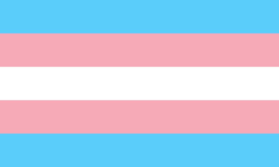 Transgender Pride flag.jpg