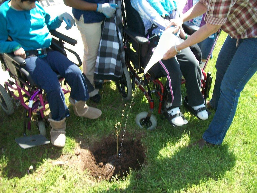 Arbor Day tree planting.