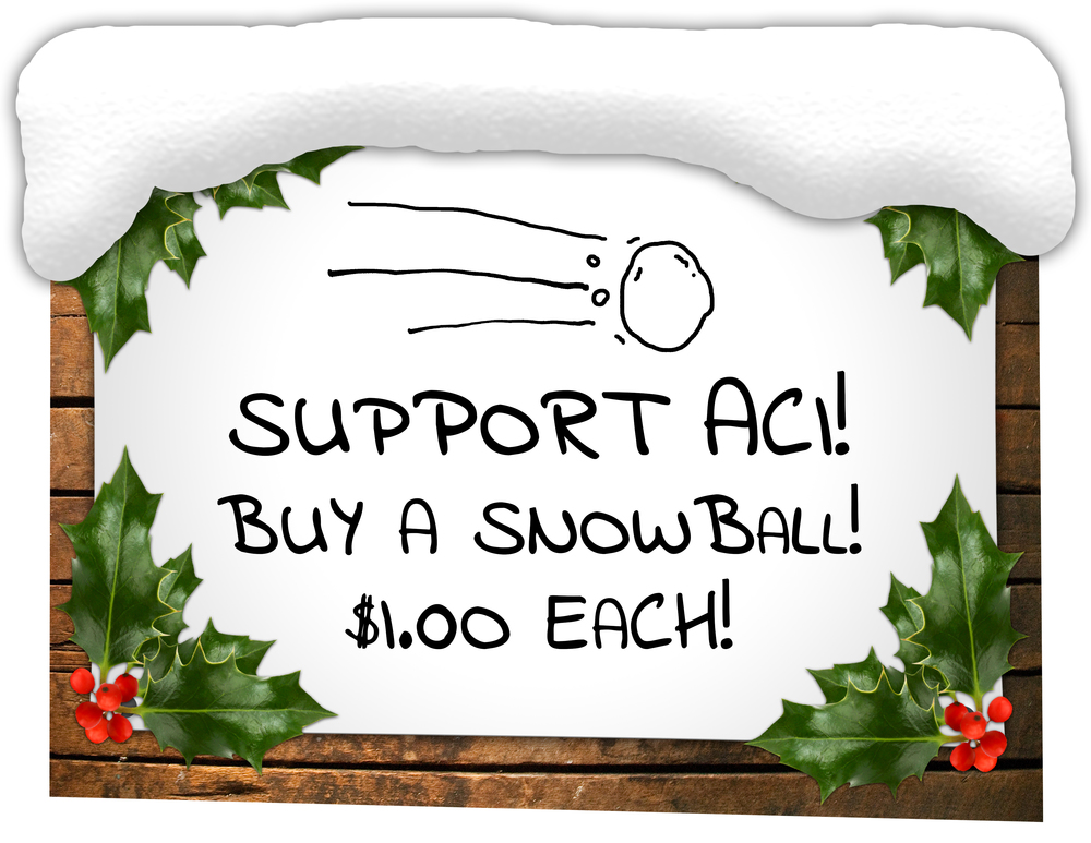 Winter Fundraiser Sign.jpg