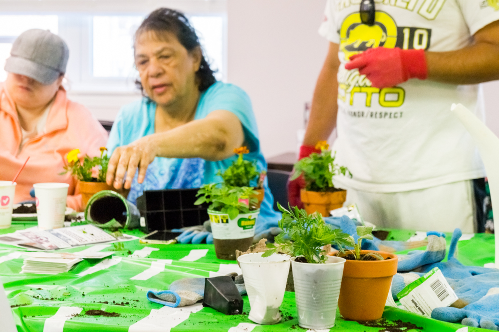 Earth Day Celebration-27.jpg